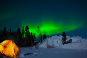 northern lights with tent snow trees-vibrance